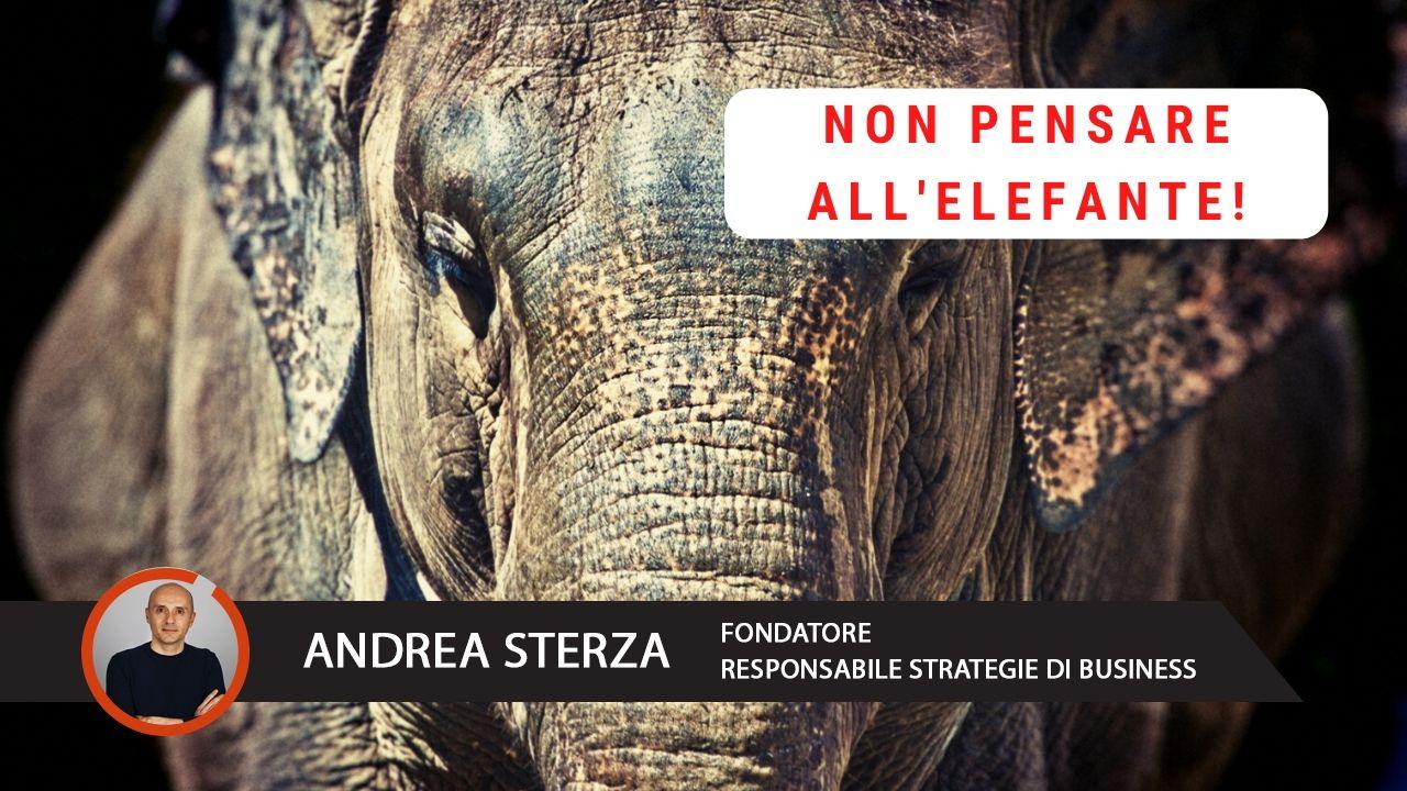 Andrea Sterza - Monitoro - Assistenza Informatica per aziende